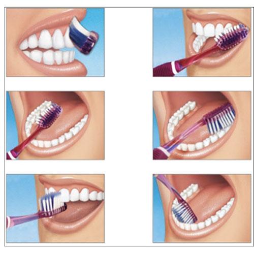 première visite chez le dentiste cliniquedentairecarriere.com